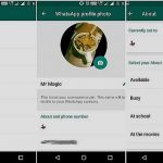 WhatsApp brings back 'Text Status' for Android Users